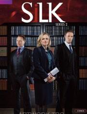 皇家律师 第二季