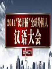 """2014""""汉语桥""""全球外国人汉语大会"""