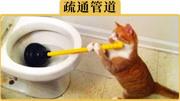 節氣門都是洗壞的?教你如何自己清洗節氣門,只要5分鐘