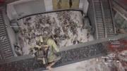 毁结局系列 僵尸世界大战该怎样结局