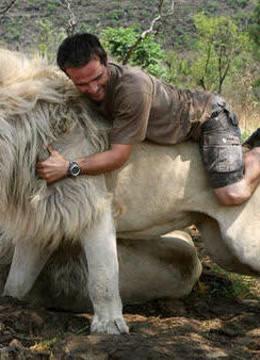 狮群搬家精彩合集