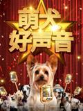 萌犬好声音完整版免费在线观看