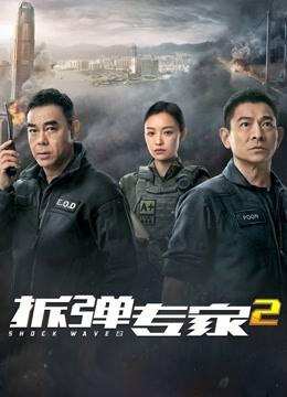 拆弹专家2 粤语版