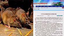 内蒙古包头出现鼠疫死亡病例 35人被紧急隔离